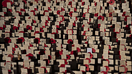 Royal British Legion to 'stop selling poppies in EU due to Brexit'