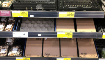 Brexit: Northern Ireland supermarkets call for urgent action to prevent trade disruption