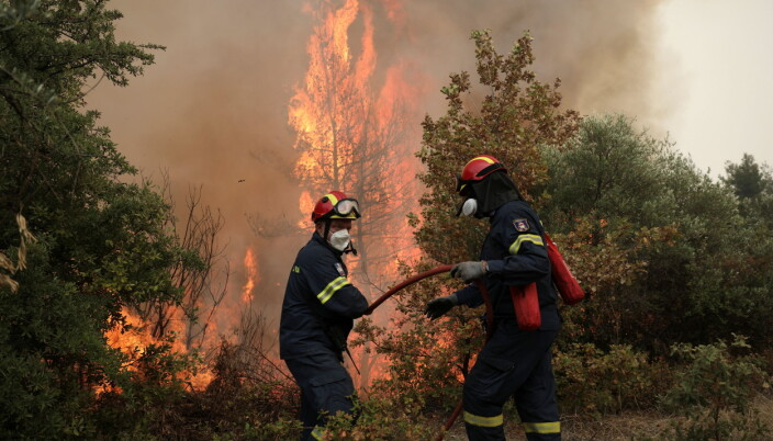 Firefighters try to extinguish a fire in the village of Avgaria, on the island of Evia, Greece