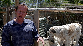 Afghanistan latest: Pen Farthing 'so happy' after animal rescue workers escape to Pakistan