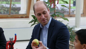 Prince William searching for superheroes to protect the planet