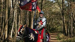 Sir David Amess: MP dressed as knight to celebrate knighthood in 2015