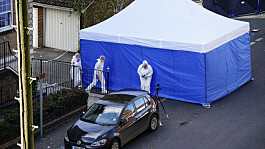 Brentwood: Teenager charged with murder after death of two boys